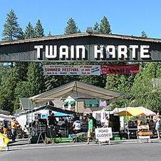 Twain Harte Times